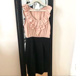 Blush & Black Dressy/Work Professional Bodycon